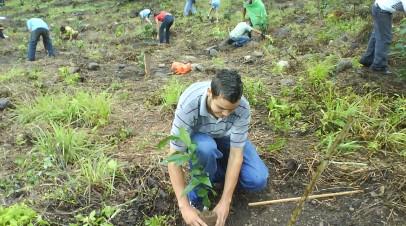 Plataforma Juvenil reforesta Polo en Barahona