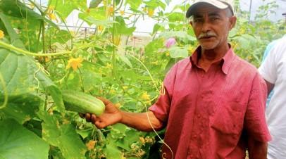 Organizaciones agroecológicas del Caribe impulsan una agenda colectiva