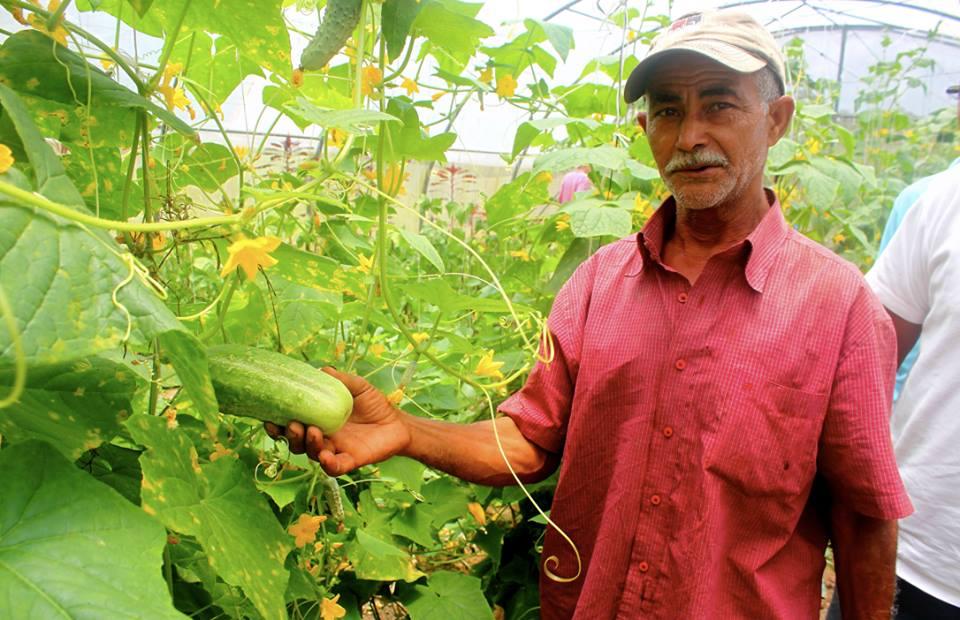 Danilo de Ecobatey, una finca de producción agroecológica en Rancho Arriba - San José de Ocoa