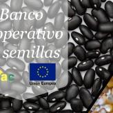Cooperativa de productores e IDEAC originan banco cooperativo de semillas
